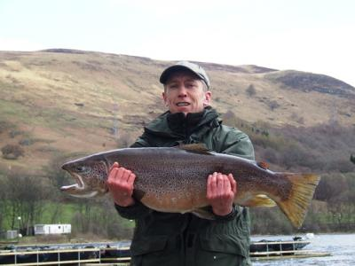 Another Specimen Brown from Loch Earn