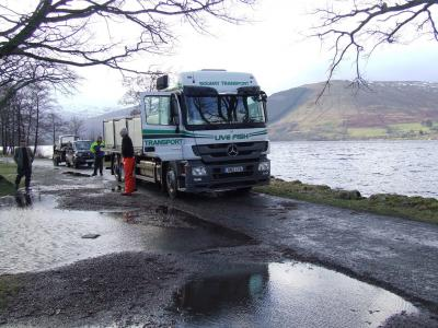 Second Delivery of Brown Trout for the 2015 Season