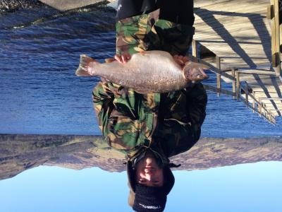 11lbs 10ozs Brown Trout Darrel Faulkes on 18th April 2015
